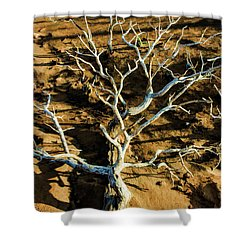 Brins Mesa 07-104 Stripped Bare Shower Curtain by Scott McAllister