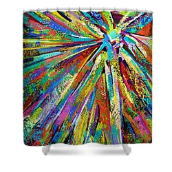 Brittle Enthusiasm Shower Curtain