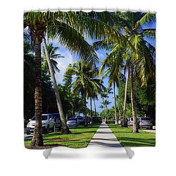 Broad Avenue South, Old Naples Shower Curtain by Robb Stan