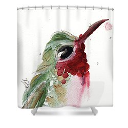 Shower Curtain featuring the painting Broadtail Hummingbird by Dawn Derman