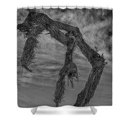 Broken Back Shower Curtain