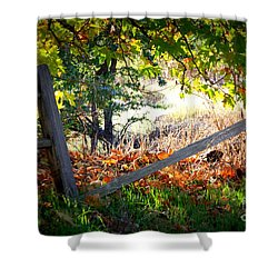 Broken Fence In Sycamore Park Shower Curtain by Carol Groenen
