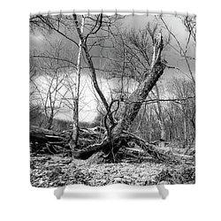 Shower Curtain featuring the photograph Broken Tree by Alan Raasch