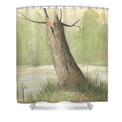 Broken Tree Shower Curtain