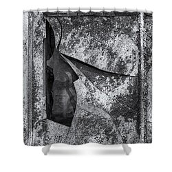 Shower Curtain featuring the photograph Broken Window by Tom Singleton