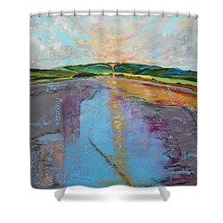 Broken Words Shower Curtain by Sue Furrow