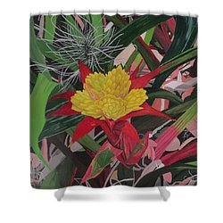 Bromelaid And Airplant Shower Curtain