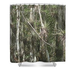 Bromeliads On Trees Shower Curtain