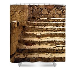 Bronze Age Stairs Shower Curtain