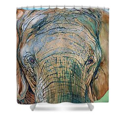 Bronze Elephant Shower Curtain