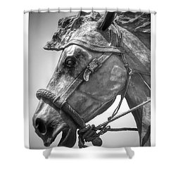 Bronze Head Shower Curtain