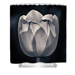 Shower Curtain featuring the photograph Brooding Virtue by Bill Pevlor