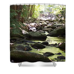 Brook Shower Curtain by Denny Casto