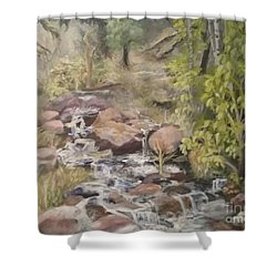 Shower Curtain featuring the painting Brook by Saundra Johnson