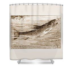 Shower Curtain featuring the photograph Brook Trout Going After A Fly by John Stephens