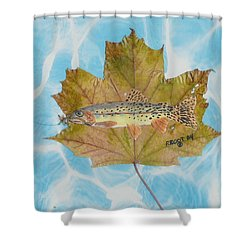Brook Trout On Fly Shower Curtain