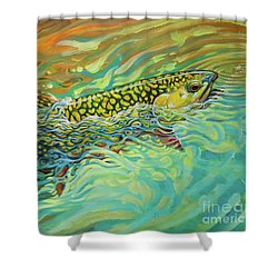 Brookie Flash Rework Shower Curtain