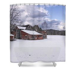Brookline Winter Shower Curtain
