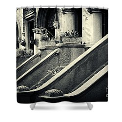 Brooklyn Park Slope Stoops Shower Curtain