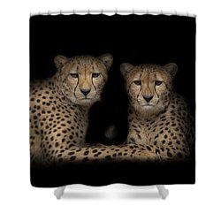 Shower Curtain featuring the photograph Brothers by Cheri McEachin