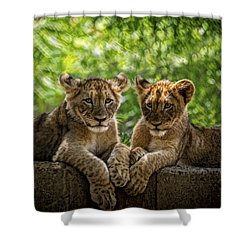 Shower Curtain featuring the photograph Brothers Chillin by Cheri McEachin
