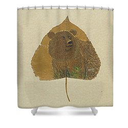 Brow Bear #2 Shower Curtain