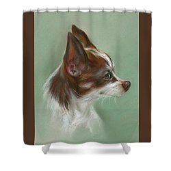 Shower Curtain featuring the pastel Brown And White Chihuahua by MM Anderson