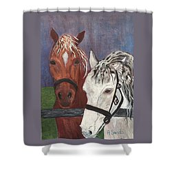 Brown And White Horses Shower Curtain
