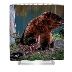 Brown Bear And Magpie Shower Curtain