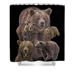 Brown Bears 8 Shower Curtain