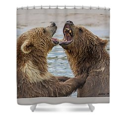 Brown Bears4 Shower Curtain