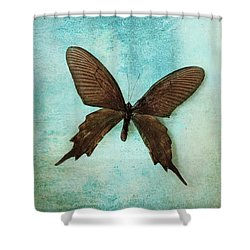 Brown Butterfly Over Blue Textured Background Shower Curtain