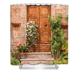 Brown Door Of Tuscany Shower Curtain