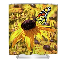 Brown Eyed Susens And The Monarch Shower Curtain by Diane Schuster