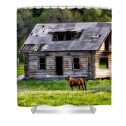 Brown Horse And Old Log Cabin Shower Curtain
