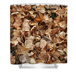 Brown Leaf Carpet Shower Curtain