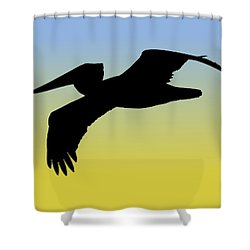 Brown Pelican In Flight Silhouette At Sunrise Shower Curtain