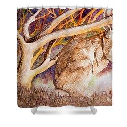 Brown Rabbit Shower Curtain