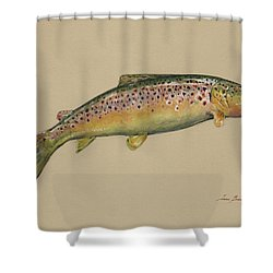 Brown Trout Jumping Shower Curtain by Juan Bosco