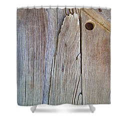 Brown Wood Barn Door Shower Curtain
