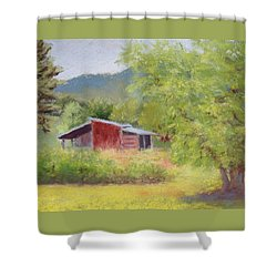 Shower Curtain featuring the painting Brown's Shed by Nancy Jolley