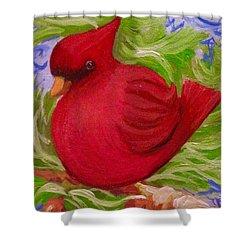 Brrr Bird Shower Curtain
