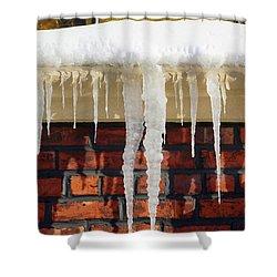 Brrrrr Shower Curtain