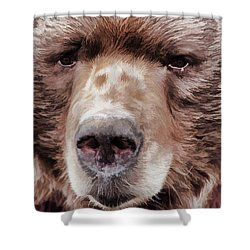 Bruin Shower Curtain