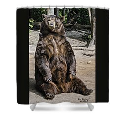 Bruno The Bear Shower Curtain