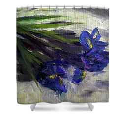 Brush Flowers #1 Shower Curtain by Brian Kardell