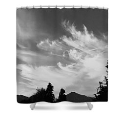 Brush Strokes Shower Curtain by Russell Keating
