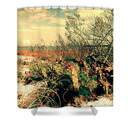 Brush Work Shower Curtain