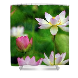 Shower Curtain featuring the photograph Brushed Lotus by Edward Kreis