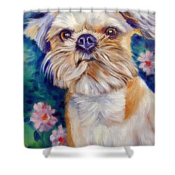Brussels Griffon Shower Curtain by Lyn Cook